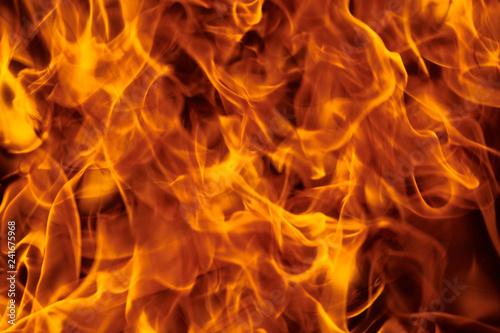 Fotobehang Vuur flame of hot fire