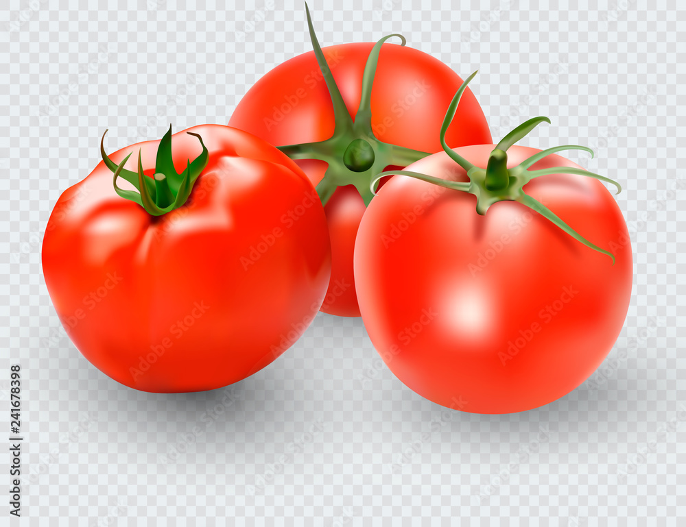 Fototapety, obrazy: Tomato set. Red tomato collection. Photo-realistic vector tomatoes on transparent background