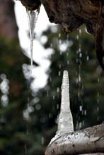 Fontana Delle Rane Particolare...