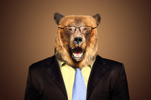 Portrait Of A Funny Bear In A ...