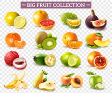 Realistic Fruit Set