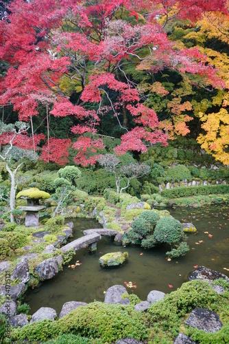 Fotobehang Tuin 秋深し木々色づく當麻の里
