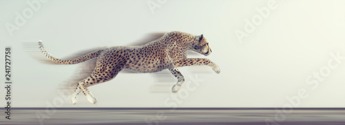 Photo  A beautiful cheetah running