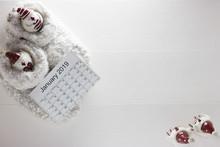 Top View: Calendar January 201...