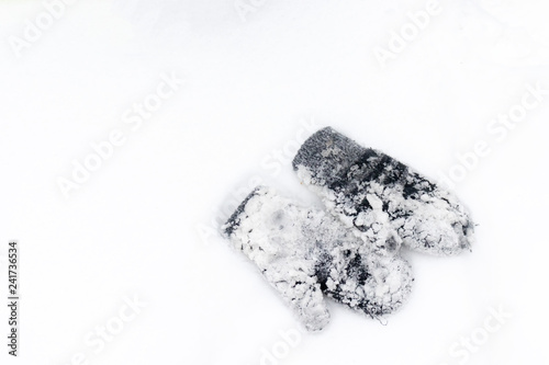 Fotografie, Obraz  A pair of mitten covered with lots of snow lying on a white snow
