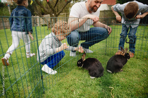 Petting the Rabbits