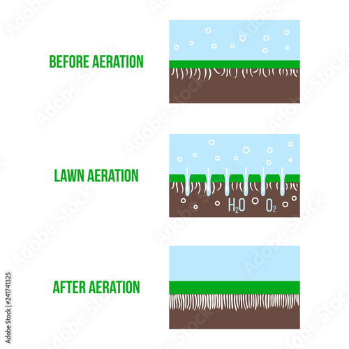 Fotografija Lawn aeration stage illustration