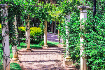 Fototapeta Architektura Jardim de folhas