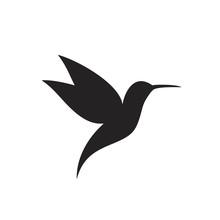 Hummingbird Silhouette. Isolated Hummingbird On White Backgroun. Bird