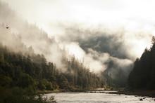 Rogue River, Oregon, USA