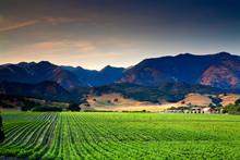 Arroyo Grande, California: Cen...