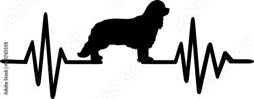 Fotografia, Obraz Cavalier King Charles frequency silhouette