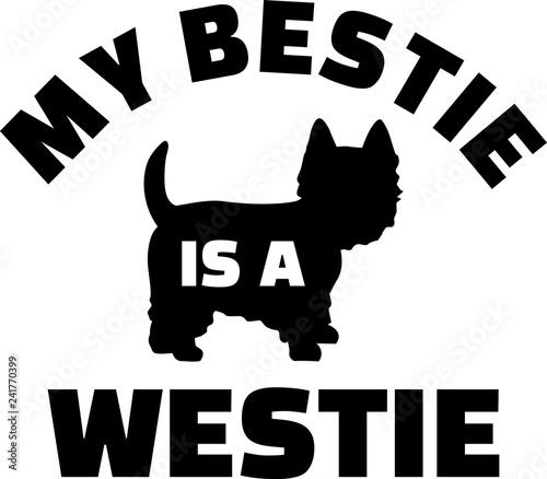 Fotografie, Obraz My Bestie is a Westie