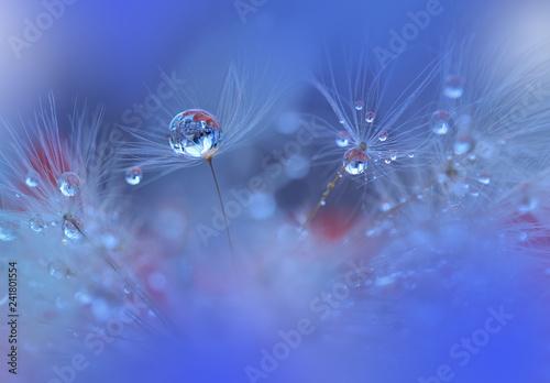 Fototapeta premium Abstrakcjonistyczna makro- fotografia z dandelion i wodą opuszcza. Artystyczny tło dla desktop. Kwiaty robić z pastelowymi brzmieniami. Spokojna abstrakcjonistyczna zbliżenie sztuki fotografia. Druk dla tapety. Kwiecisty fantazja projekt