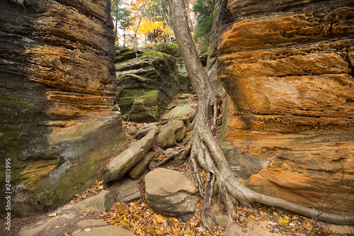 Sedimentary rock of Ritchie Ledges in Cuyahoga Valley National Park Canvas-taulu