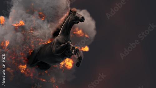 Cuadros en Lienzo Black running horse on orange fire background