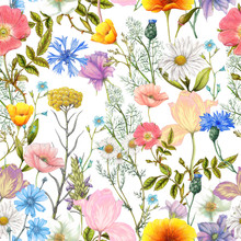 Seamless Pattern Of Summer Wil...