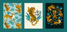 Vector Poster Set Of Tigers An...
