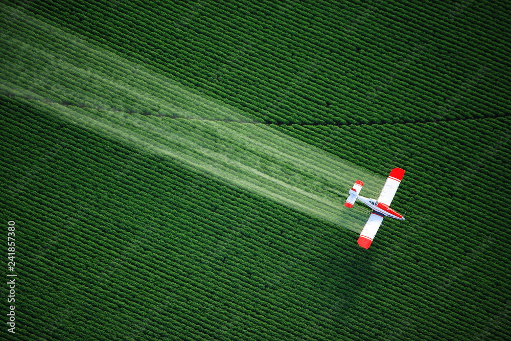 Fototapety, obrazy: aerial view of a crop duster or aerial applicator, flying low, and spraying agricultural chemicals, over lush green potato fields in Idaho.