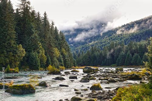 Poster de jardin Rivière de la forêt Haines, Chilkoot river in autumn, fall, Alaska, USA