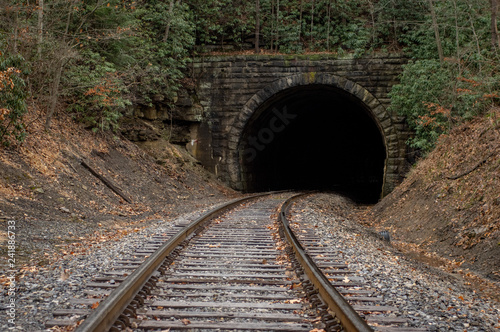 Fotografie, Obraz  Railroad Going through a Tunnel