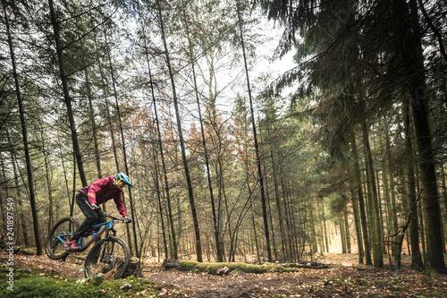 Sport extrême vtt de descente dans les bois en automne Canvas-taulu
