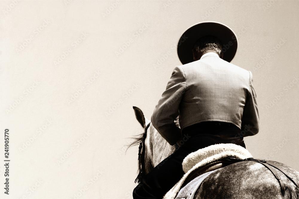 Fototapety, obrazy: spanish horse rider
