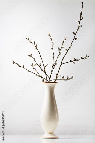 Photo  Pussy willow catkins bouquet in old vase