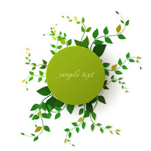 Vector. Round Banner With Leaves, Vector Illustration.