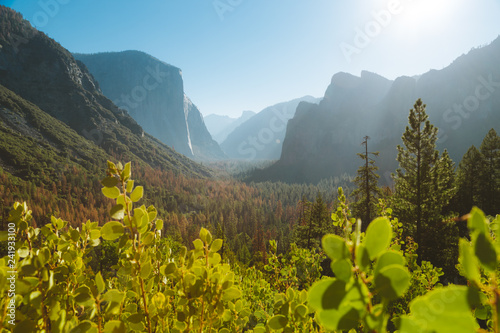 Fotobehang Centraal-Amerika Landen Yosemite National Park at sunrise, California, USA