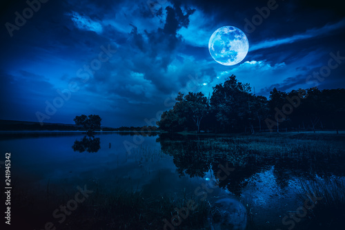 Poster Arbre Beautiful full moon and cloudy on blue sky above silhouettes of trees, lake area.