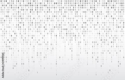 Digital binary code Wallpaper Mural