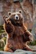 Leinwandbild Motiv Big bear greeting