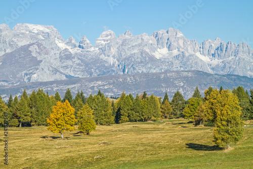 Fototapeta premium Jesienny nastrój w Trentino
