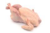 Fototapeta Zwierzęta - kurczak surowy