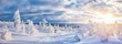 Leinwanddruck Bild - Cross-country skiing in winter wonderland in Scandinavia at sunset