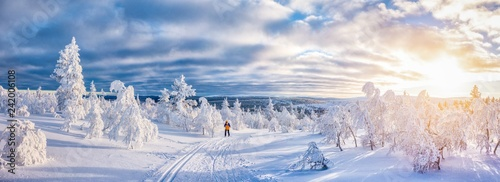 La pose en embrasure Glisse hiver Cross-country skiing in winter wonderland in Scandinavia at sunset