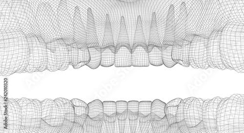 Fotografia  human jaw. 3d vector layout. medicine and health