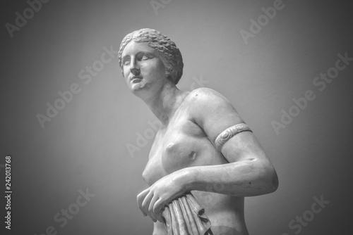 Obraz na płótnie Venus goddess of love in soft light