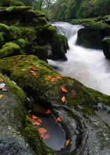 The Strid And Small Pool, Bolt...