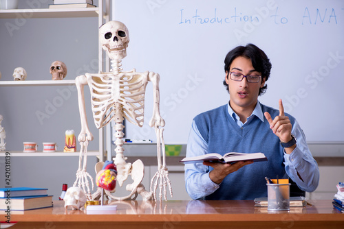 Young lecturer teacher teaching anatomy Canvas Print