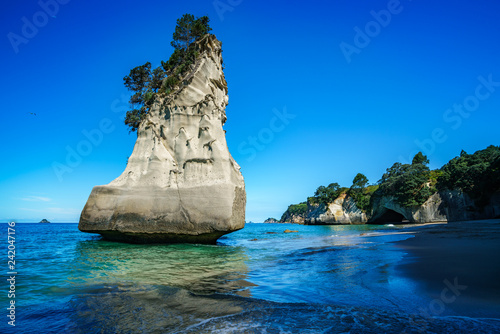 Foto op Canvas Cathedral Cove sandstone monolith,cathedral cove,coromandel peninsula,new zealand 10