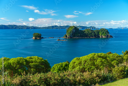 Foto op Canvas Cathedral Cove the way from cathedral cove,coromandel peninsula,new zealand 7