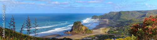 Photo Piha Beach and Lion Rock aerial panorama