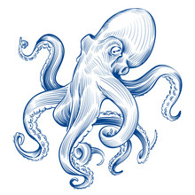 Vintage Octopus. Hand Drawn Sq...