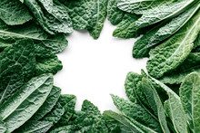Fresh Organic Green Kale Frame On A White Background, Flat Lay Healthy Nutrition Concept, Top View With Copy Space