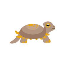 Cute Prehistoric Turtle, Funny...
