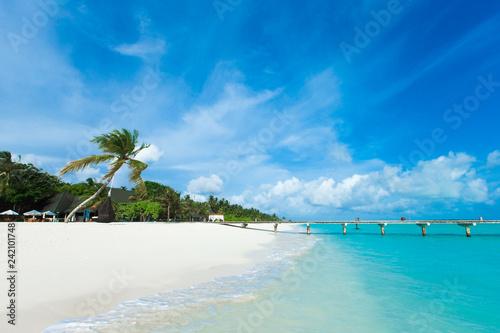 Fototapeta premium tropikalna wyspa Malediwy z białą piaszczystą plażą i morzem