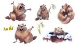 Fototapeta Fototapety na ścianę do pokoju dziecięcego - Happy Groundhog Day - hand drawn watercolor collection illustrations character card groundhog