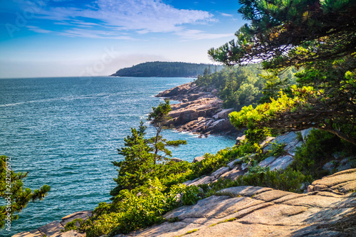 Fotografie, Obraz  The Ocean Path Trail in Acadia National Park, Maine